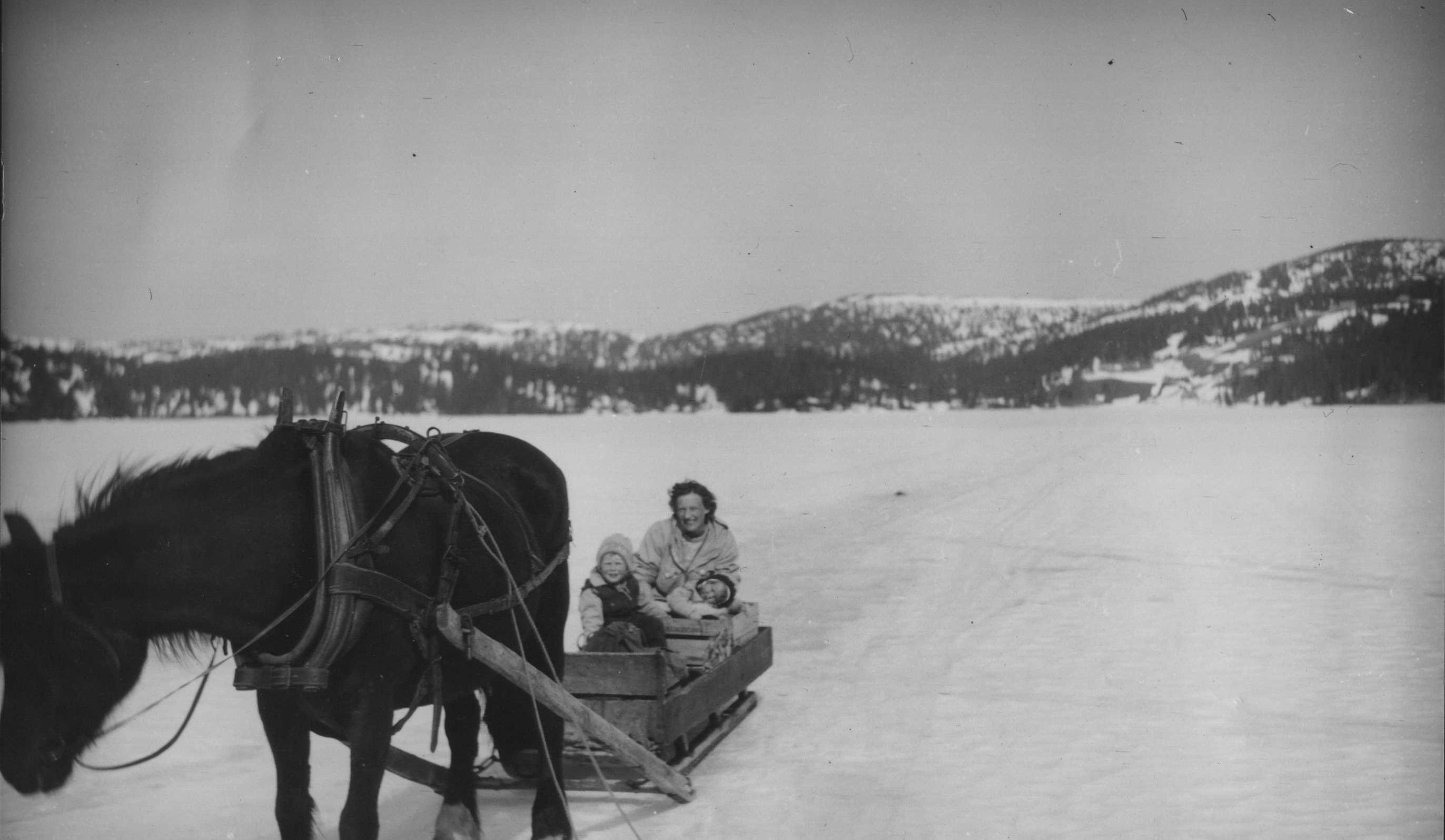 Hest og slede på isen over Juvatnet II